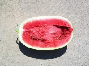 TORPILA-F1-watermelons-farm-fresh-panagoulias-2