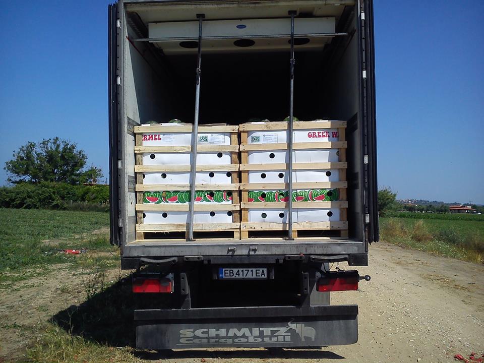 exports-1-new-fresh-panagoulias
