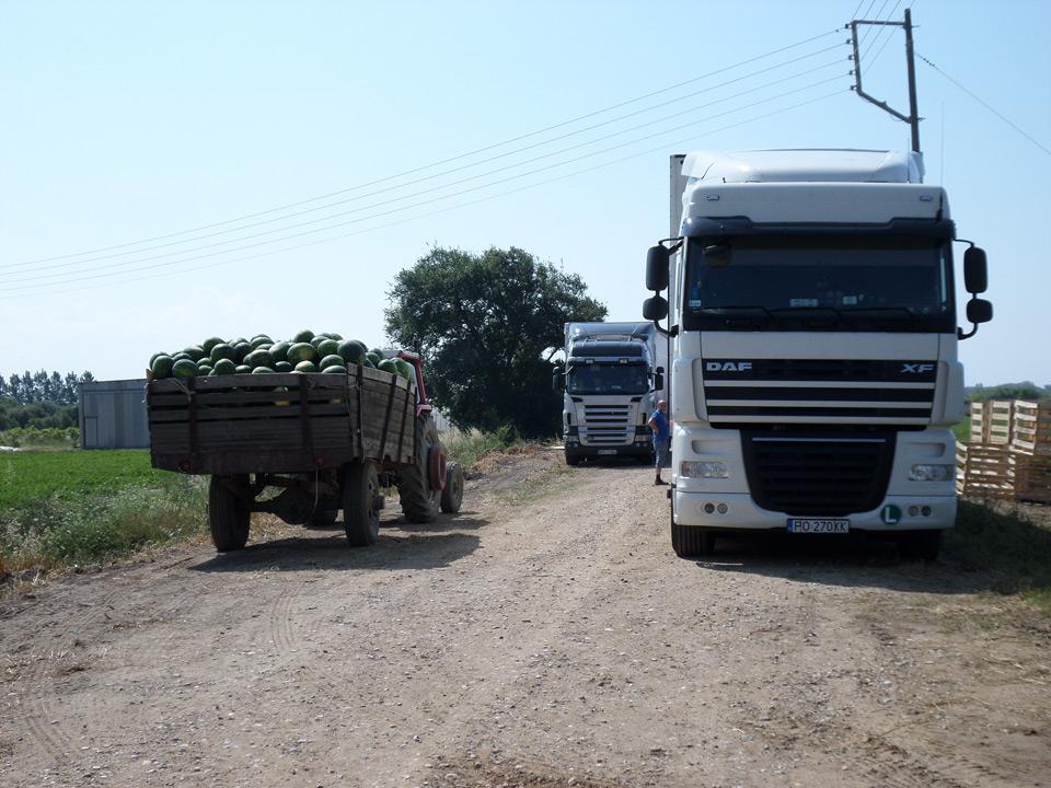 exports-2-new-fresh-panagoulias